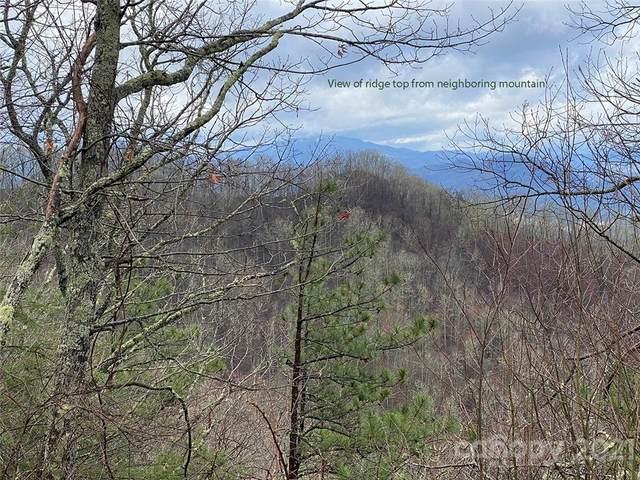 0 Grassy Branch Road, Bryson City, NC 28713 (#3738925) :: BluAxis Realty