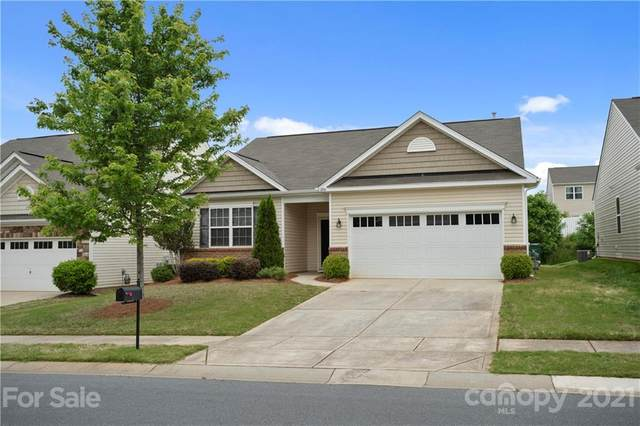 11914 Downy Birch Road, Charlotte, NC 28227 (#3739027) :: MOVE Asheville Realty