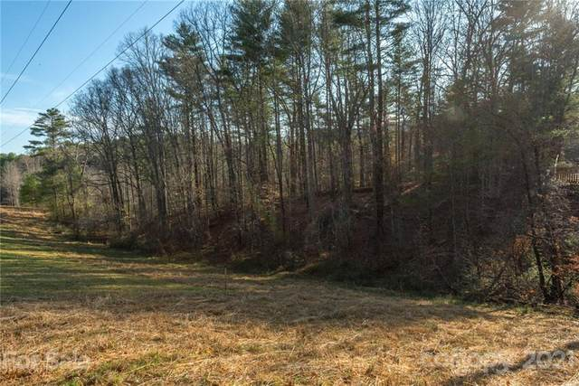 999 Clarks Chapel Road, Weaverville, NC 28787 (#3739163) :: MOVE Asheville Realty