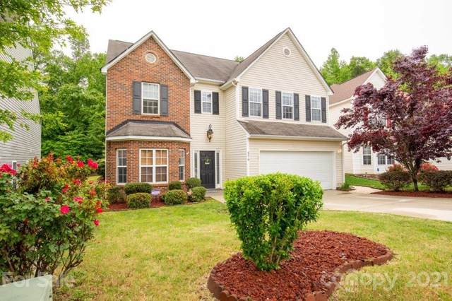 4219 Springhaven Drive, Charlotte, NC 28269 (#3739164) :: Stephen Cooley Real Estate Group