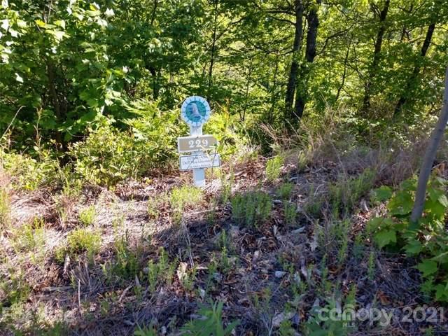 2109 Catawba Falls Parkway #229, Black Mountain, NC 28711 (#3739293) :: Modern Mountain Real Estate