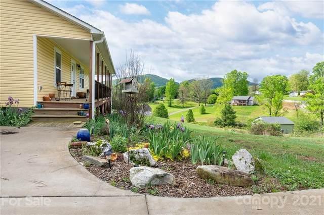 25 Danielbrooke Drive, Asheville, NC 28806 (#3739480) :: Keller Williams Professionals