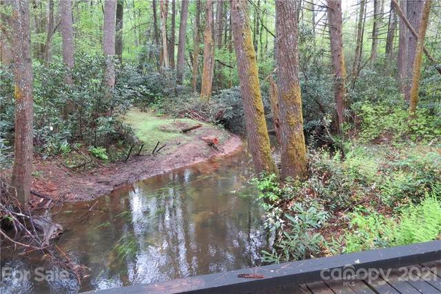 L46 Stones Lake Road, Cedar Mountain, NC 28718 (#3739517) :: Cloninger Properties