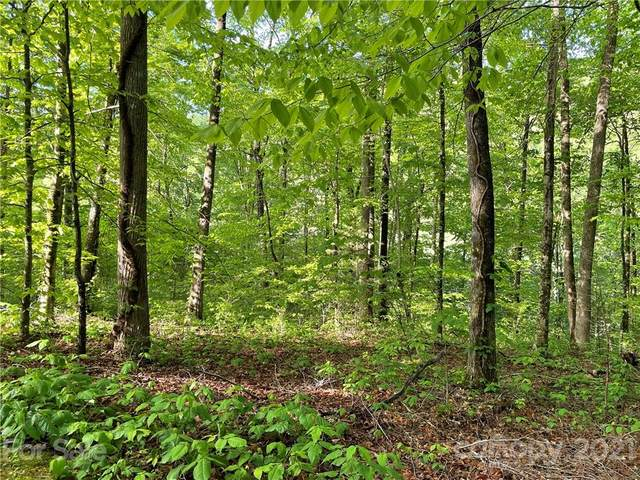 0 Eagle View Circle #31, Whittier, NC 28789 (#3739534) :: LePage Johnson Realty Group, LLC