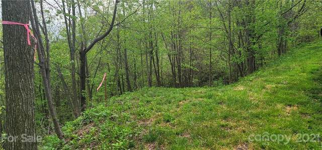 114B Chimney Ridge Trail, Waynesville, NC 28786 (#3739773) :: Mossy Oak Properties Land and Luxury