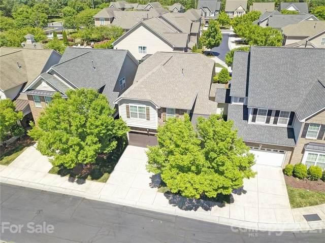 5923 Glenmore Garden Drive, Charlotte, NC 28270 (#3739785) :: Lake Wylie Realty
