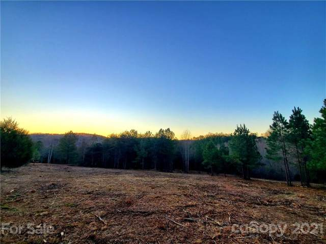 700 Will Green Road #2, Tryon, NC 28782 (#3740108) :: Mossy Oak Properties Land and Luxury