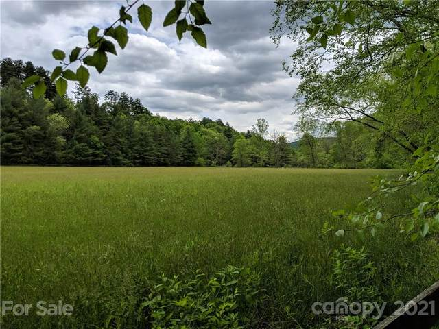 85 Gap Creek Road #85, Fletcher, NC 28730 (#3740175) :: Exit Realty Vistas