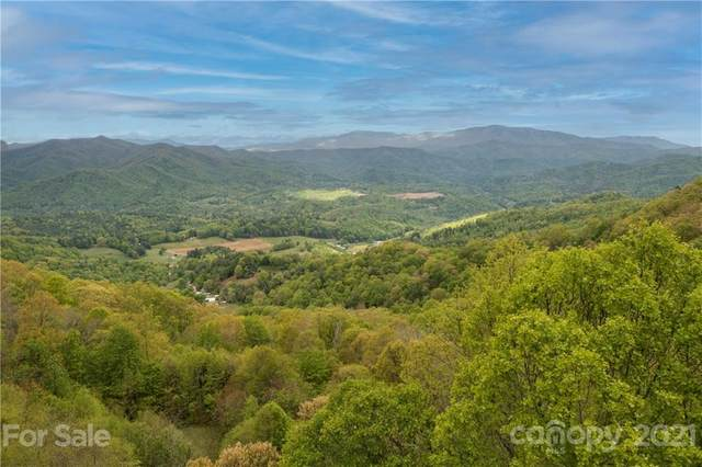 899 Hyacinth Drive #2, Clyde, NC 28721 (#3740427) :: DK Professionals