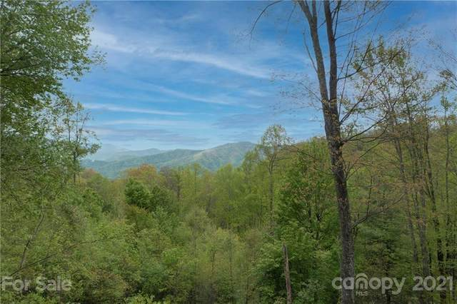 1098 Hyacinth Drive #7, Clyde, NC 28721 (#3740429) :: DK Professionals