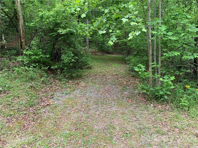 999 Hickory Nut Drive #38, Mill Spring, NC 28756 (#3740490) :: Mossy Oak Properties Land and Luxury