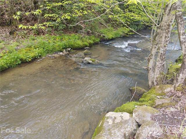 000 Laurel Valley Road, Mars Hill, NC 28754 (#3740763) :: Mossy Oak Properties Land and Luxury