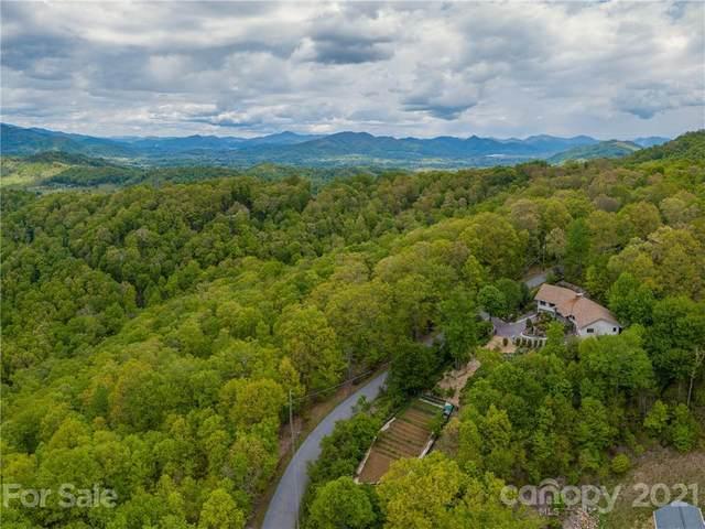 445 Brandywine Road, Waynesville, NC 28786 (#3740947) :: Exit Realty Vistas
