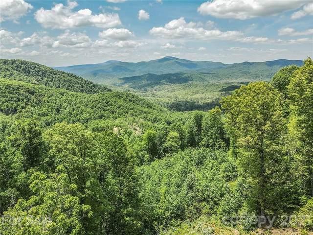 80 High Cliffs Trail, Black Mountain, NC 28711 (#3741489) :: Keller Williams South Park
