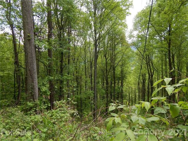 000 Greenspire Drive, Balsam, NC 28707 (#3741914) :: Modern Mountain Real Estate