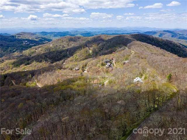 352 Birch Springs Lane #352, Mars Hill, NC 28754 (#3742731) :: Exit Realty Vistas
