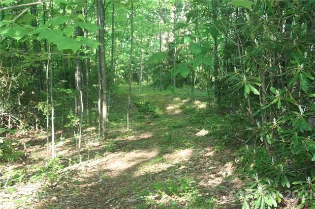 21 Woodhaven Lane, Black Mountain, NC 28711 (#3742893) :: Rhonda Wood Realty Group