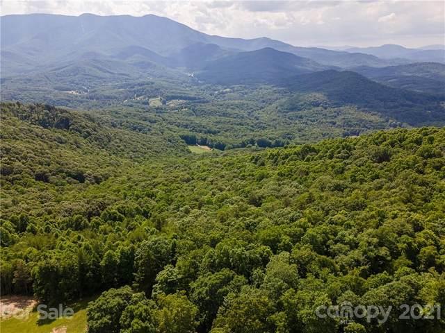 21.56 acres Cabbage Patch Road, Burnsville, NC 28714 (#3743017) :: Willow Oak, REALTORS®