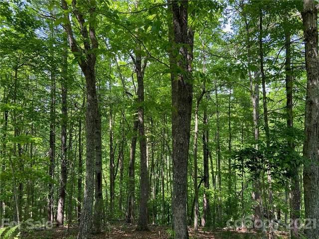 205 River Club Trail #9, Marshall, NC 28753 (#3743193) :: High Vistas Realty