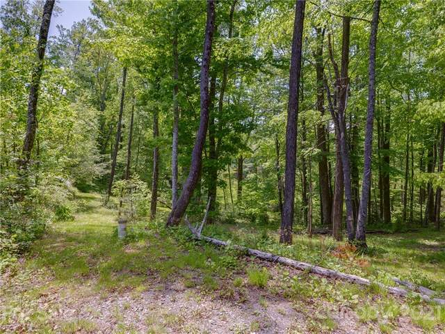 Lots 10,11 & 12 Springwater Drive, Brevard, NC 28712 (#3743515) :: Stephen Cooley Real Estate Group