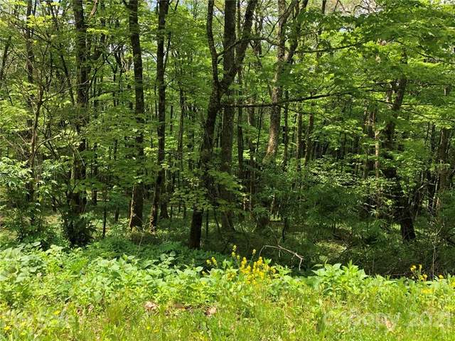 360 Birch Springs Lane #360, Mars Hill, NC 28754 (#3743539) :: NC Mountain Brokers, LLC