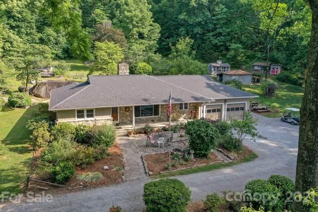 111 Buddy Lane, Chimney Rock, NC 28720 (#3744038) :: DK Professionals