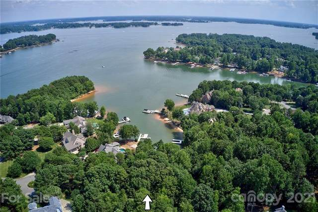 112 Tisbury Court, Mooresville, NC 28117 (#3744203) :: Stephen Cooley Real Estate Group