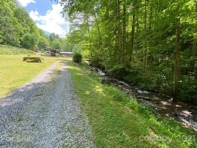 848 Jones Creek Road, Bryson City, NC 28713 (MLS #3744546) :: RE/MAX Impact Realty