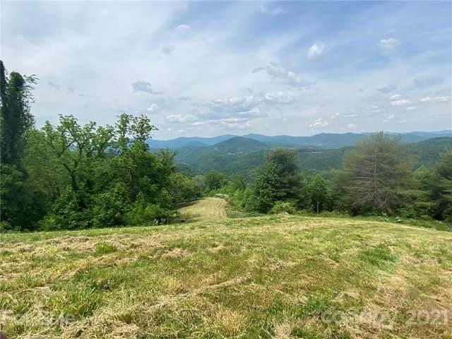 21 Pointe Trail, Marshall, NC 28753 (#3744552) :: TeamHeidi®