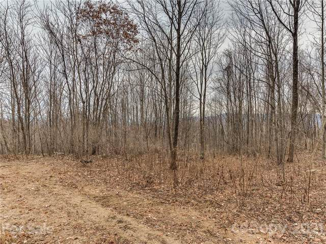 Lot 202 Cherry Hill Court, Mill Spring, NC 28756 (#3744859) :: Keller Williams Professionals