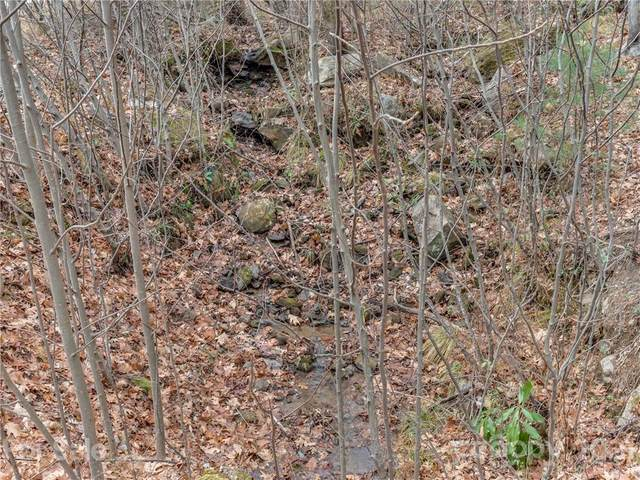 LOT 231 Chesterfield Drive, Mill Spring, NC 28756 (#3744876) :: Keller Williams Professionals
