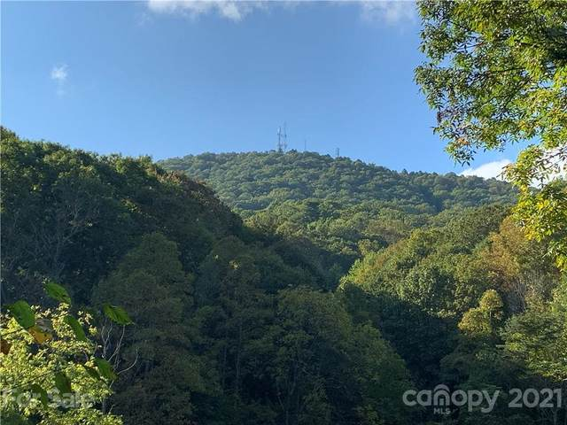 107 Rice Road #9, Asheville, NC 28806 (#3745094) :: The Mitchell Team