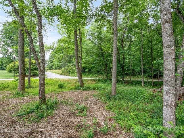 99999 Sharon Road, Fairview, NC 28730 (#3745157) :: Mossy Oak Properties Land and Luxury
