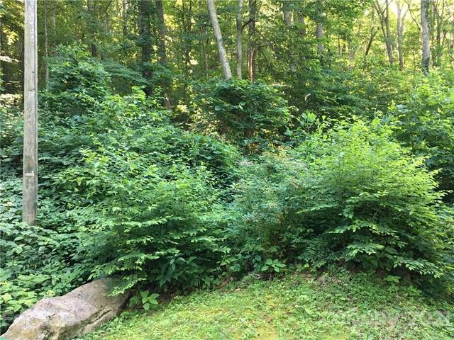 TBD Red Oak Forest Road, Fairview, NC 28730 (#3745175) :: LePage Johnson Realty Group, LLC