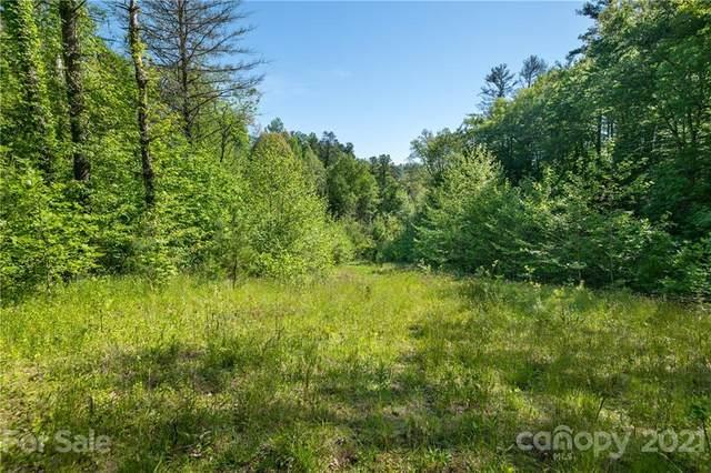 000 Mearwild Drive 43B, Marshall, NC 28753 (#3745606) :: Stephen Cooley Real Estate Group