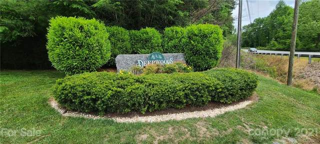 2111 Deep Woods Drive #3, Hendersonville, NC 28739 (#3745959) :: The Petree Team