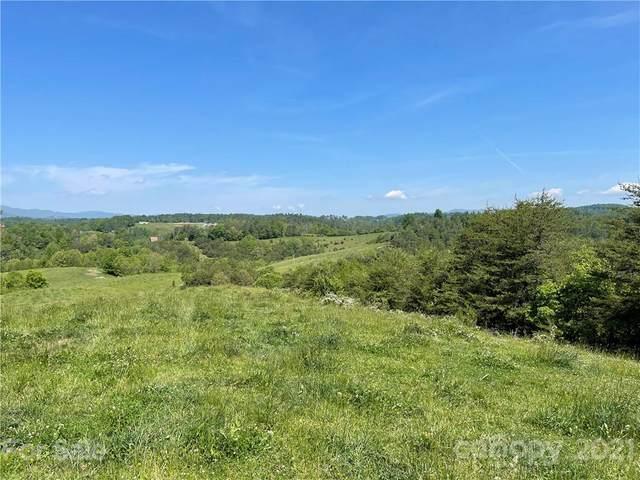 100 Lower Shephard Branch Road, Weaverville, NC 28787 (#3746082) :: Modern Mountain Real Estate