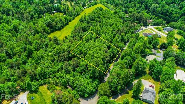 #63 Quiet Woods Drive #63, Leicester, NC 28748 (#3746774) :: Home and Key Realty