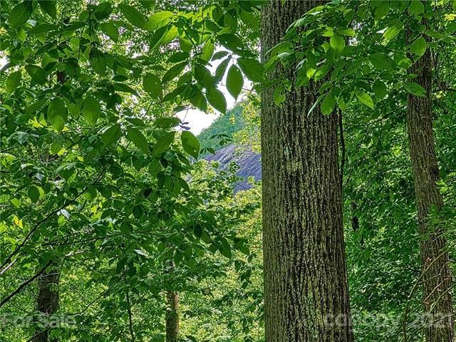 LOT 322 Big Rock Lane, Lake Lure, NC 28746 (#3746897) :: Odell Realty