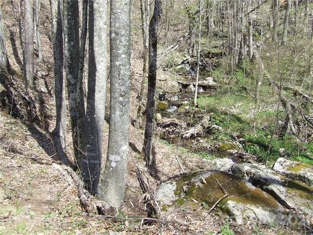 000 Broad Branch Road, Bakersville, NC 28705 (#3746918) :: Carver Pressley, REALTORS®