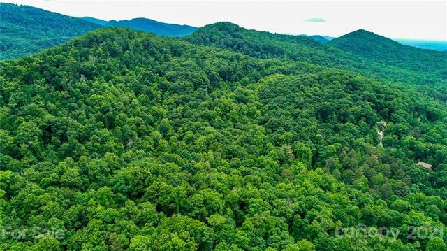 108 Camp Elliott Road, Black Mountain, NC 28711 (#3747575) :: Modern Mountain Real Estate