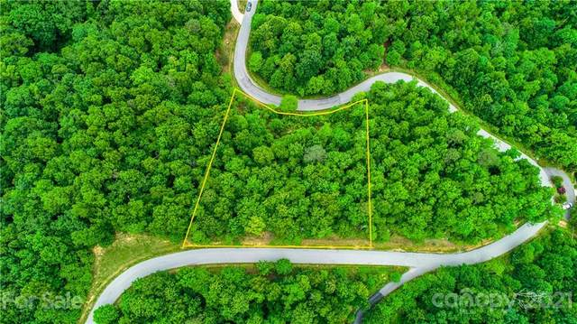 Lot 190 Catawba Falls Parkway #190, Black Mountain, NC 28711 (#3747756) :: Todd Lemoine Team