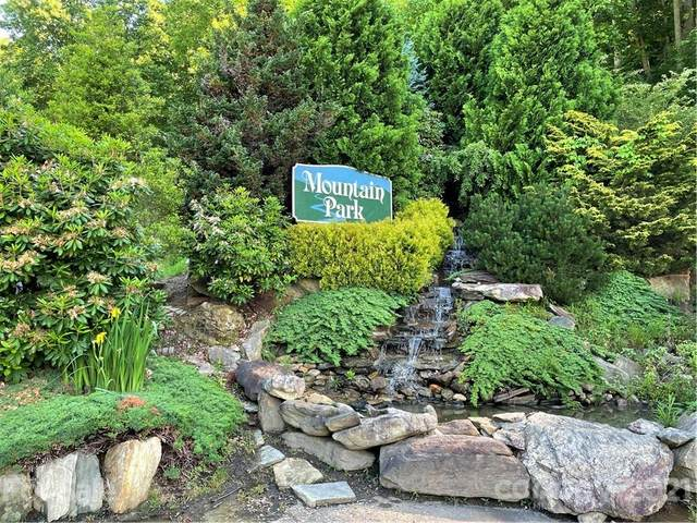 380 Serenity Mountain Lane #22, Mars Hill, NC 28754 (#3747847) :: Premier Realty NC