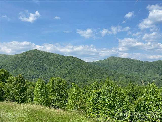 9 Clearview Lane #9, Marshall, NC 28753 (#3748126) :: Willow Oak, REALTORS®