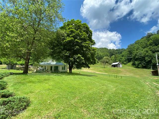 18120 Nc 209 Highway, Hot Springs, NC 28743 (#3748158) :: The Mitchell Team