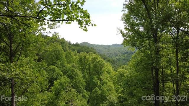 000 Little Creek Road, Hot Springs, NC 28743 (#3748212) :: Keller Williams Professionals