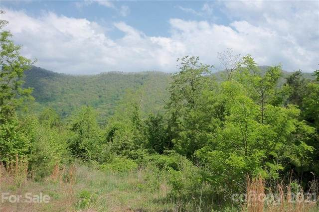 Lot 23 Turkey Trail, Canton, NC 28716 (#3748277) :: MOVE Asheville Realty