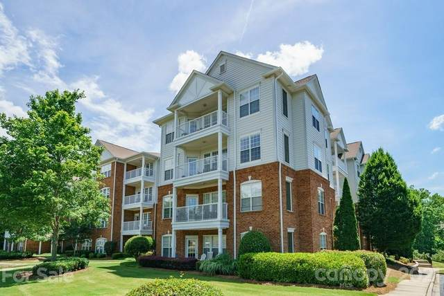 14644 Via Sorrento Drive, Charlotte, NC 28277 (#3748426) :: Stephen Cooley Real Estate Group