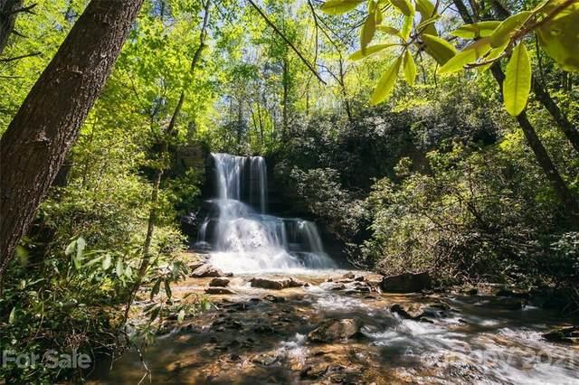 30 Abby Falls Drive #30, Rosman, NC 28772 (#3748508) :: Rhonda Wood Realty Group
