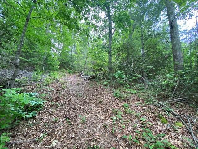 00 Firefly Road #7, Whittier, NC 28789 (#3748733) :: Rhonda Wood Realty Group